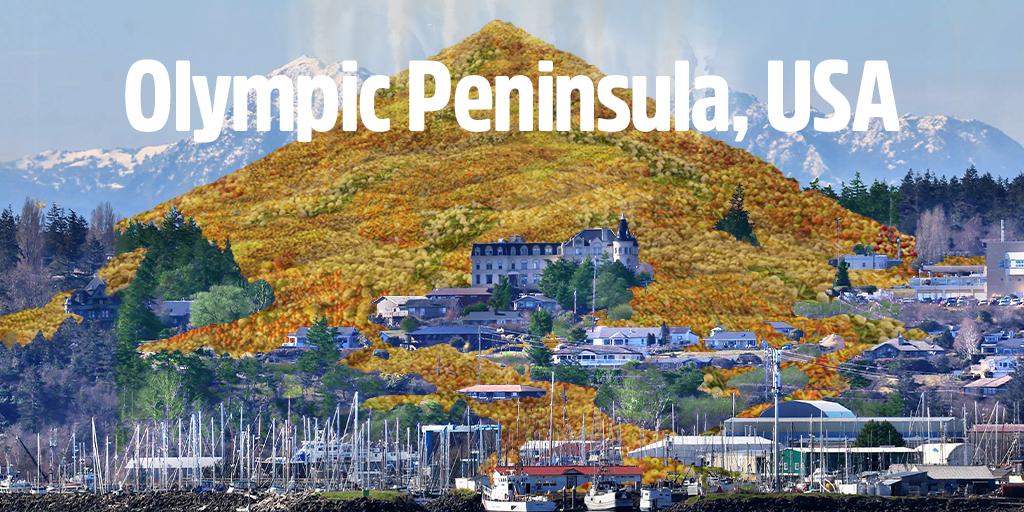 Olympic Peninsula, USA