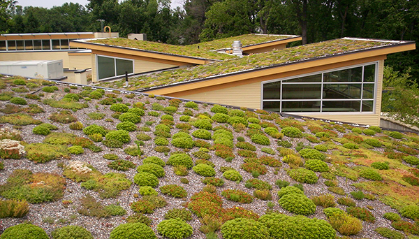 CEC Projects - Green Building