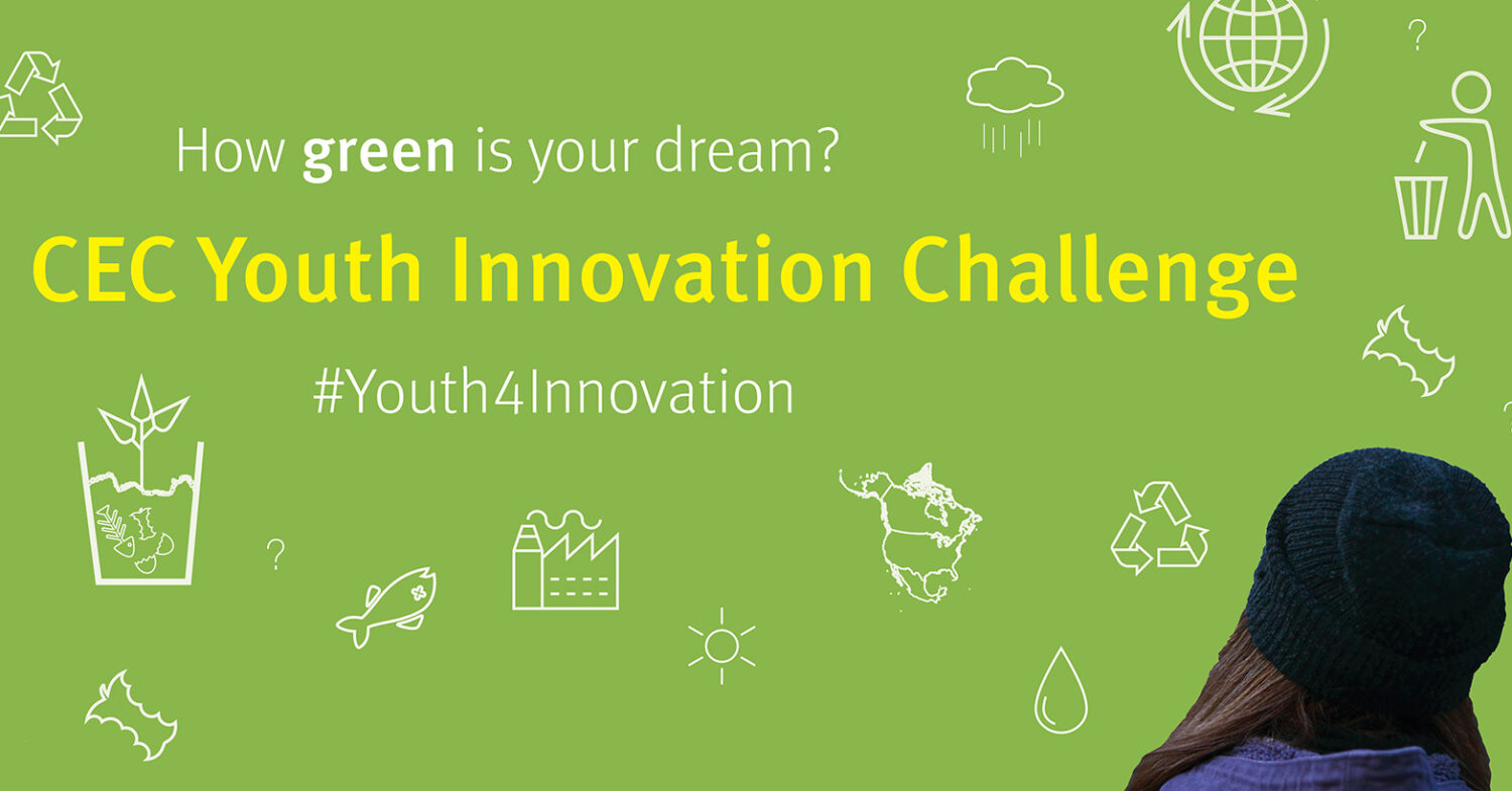 Poster for the 2017 Youth Innovation Challenge - How green is your dream?