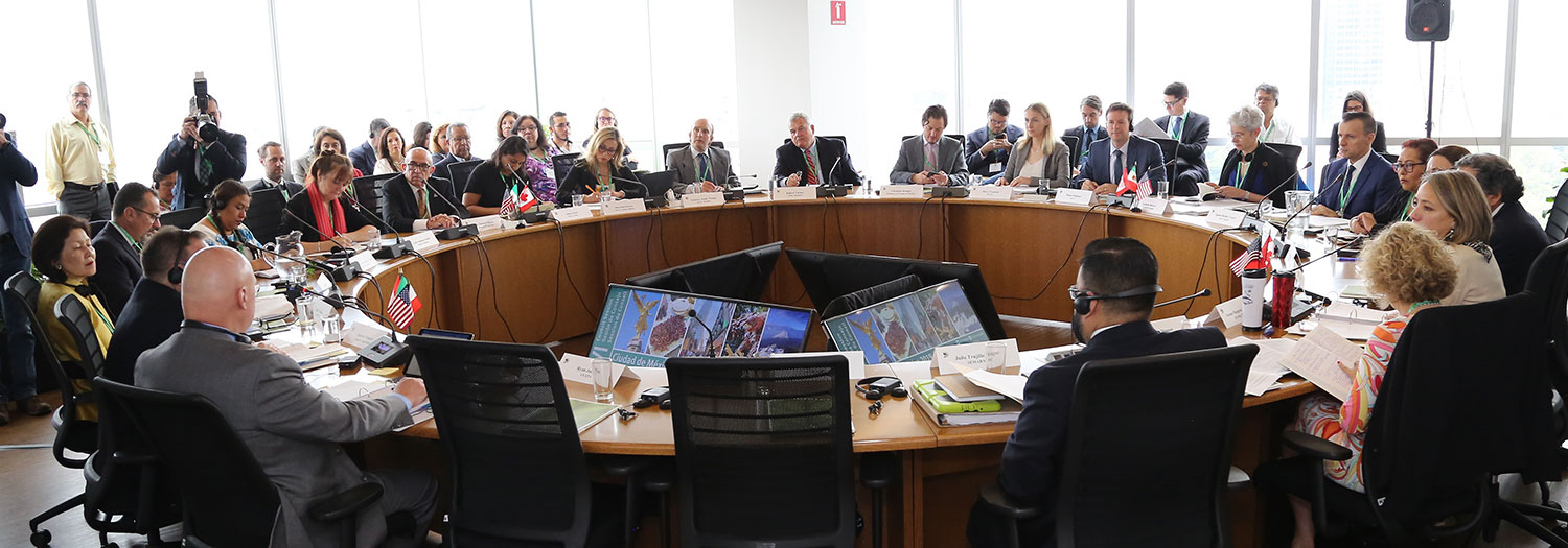 Photo of the CEC Council Members in a round table