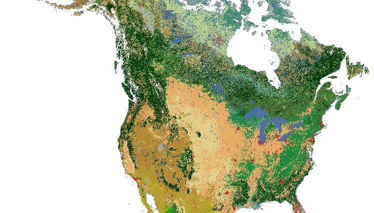 North American Land Cover Monitoring System