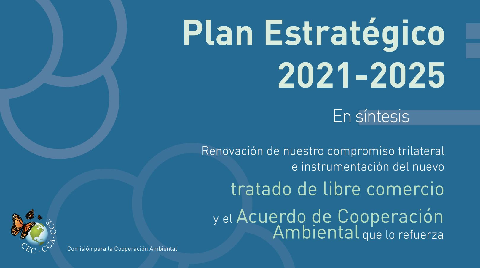 Banner for the CEC's Strategic Plan for 2021-2025