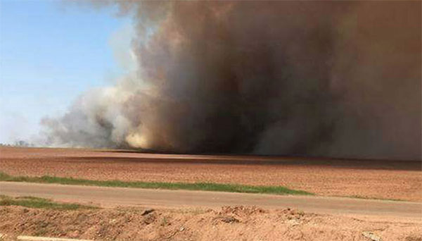 Brûlage de déchets agricoles dans l'État de Sonora