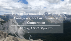 How to file a submission with the CEC