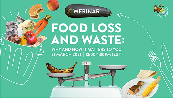 Food Loss and Waste: Why and How it Matters to You