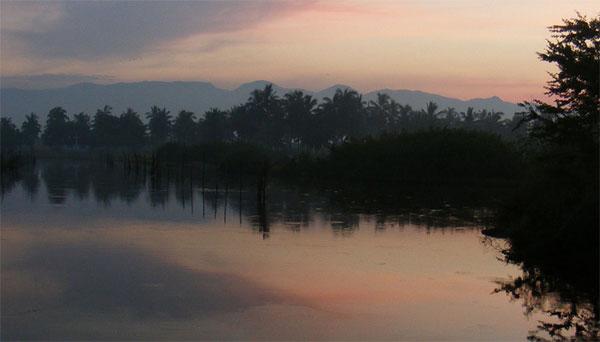 SEM Submission - Wetlands in Manzanillo
