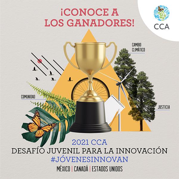 Ganadores del Desafío Juvenil para la Innovación